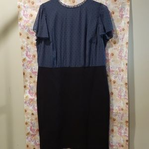 NWT Ann Taylor LOFT Dress-Size 16
